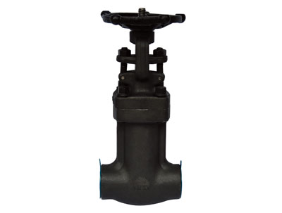 Bellows Sealed Valve